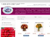 Americasflorist.com Coupon Codes