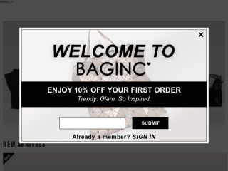 Shop at baginc.com