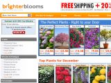 Browse Brighterblooms