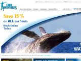 Browse Cabo Adventures