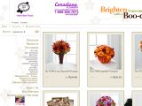 Canadianflowershop.ca Coupon Codes