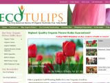 Browse Ecotulips
