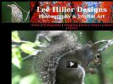 Browse Lee Hiller Designs