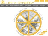 Browse Life In Synergy