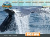 Obriensboattours.com Coupons