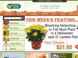 Browse Phoenix Flower Shops