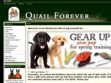 Qfstore.org Coupons