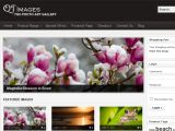 Qtimages.co.uk Coupons
