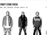 Thriftstorefresh.com Coupon Codes