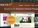 Browse Tribevita